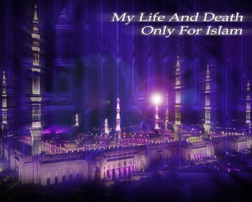 Cita-citaku Islam TinggiMenjulang