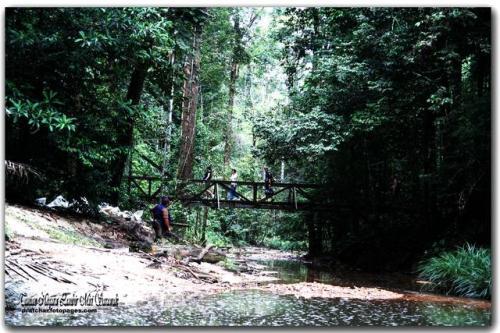 Taman NegaraLambir