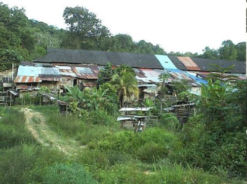 Suasana rumah panjang yang bersebelahan daripada rumah yang didiami oleh Saudara kita dan bukan Islam yang lain.
